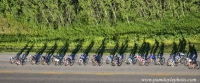 Aerial bike race shadows _pamdoyle ww