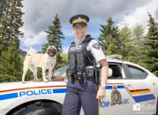 Banff RCMP dog car_pamdoyle ww