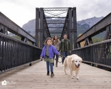 Family walk dog Eng bridge_pamdoyle ww
