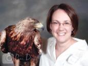 Live golden eagle