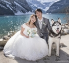 Lake Louise husky wedding_pamdoyle ww