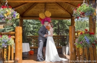 Married Bear and Bison gazebo_pamdoyle ww