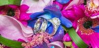 Rings flowerclosepanorama_pdoyle w