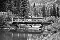 bridge-bw_pamdoyle