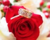 rings-in-flowers-w
