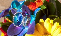 weddingrings-flowers_pamdoyle-w